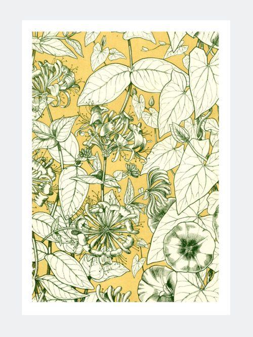 Plakat Vintage Botanika (01)