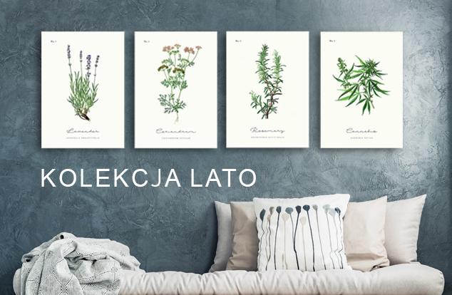 Plakaty z ziołami, kolekcja lato, vintage