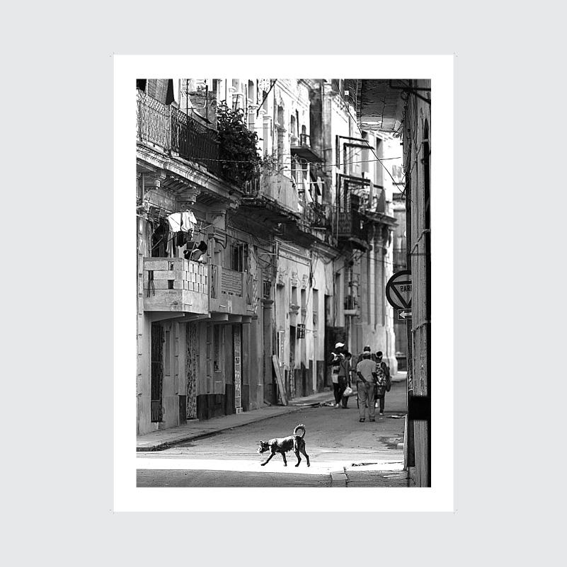 Plakat z Kuby, uliczka Havany, riksze czarno biała fotografia z Kuby, plakaty sklep Cuba Havana stare miasto