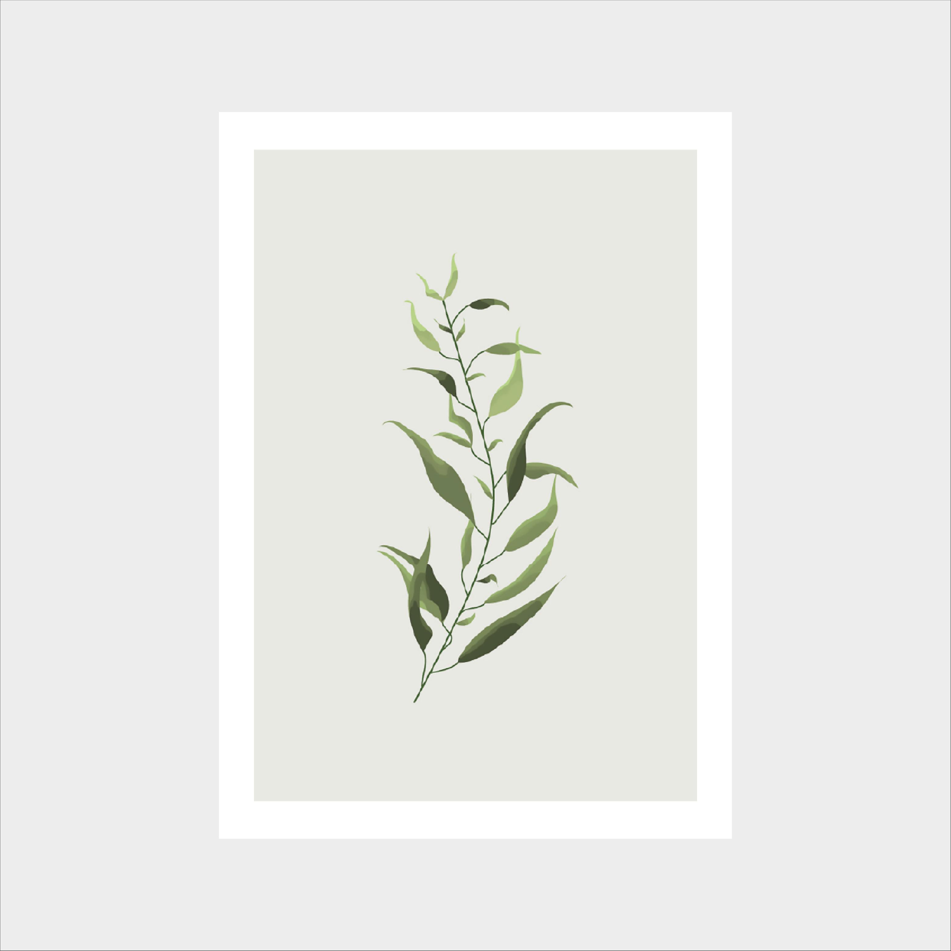 Zestaw 4 plakatów z roślinami, każdy w rozmiarze A4. Rośliny malowane są akwarelą. Plakaty oprawione w białe ramki, gotowe do powieszenia na ścianę.plakat rośliny w ramce vintage-schabby-chick skandynawski plakat botaniczny