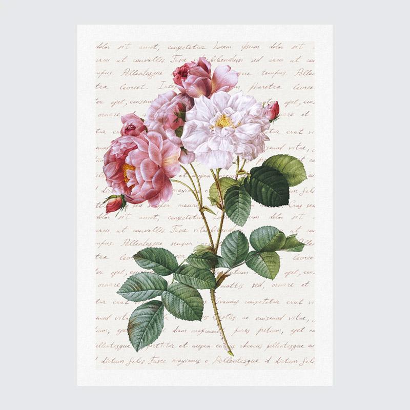 plakat vintage plakaty do druku kwiaty plakat kwiaty